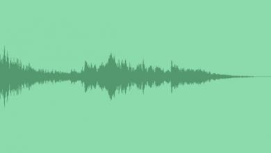 آهنگ ملایم برای ساخت لوگو 3D World Logo Reveal 5450489